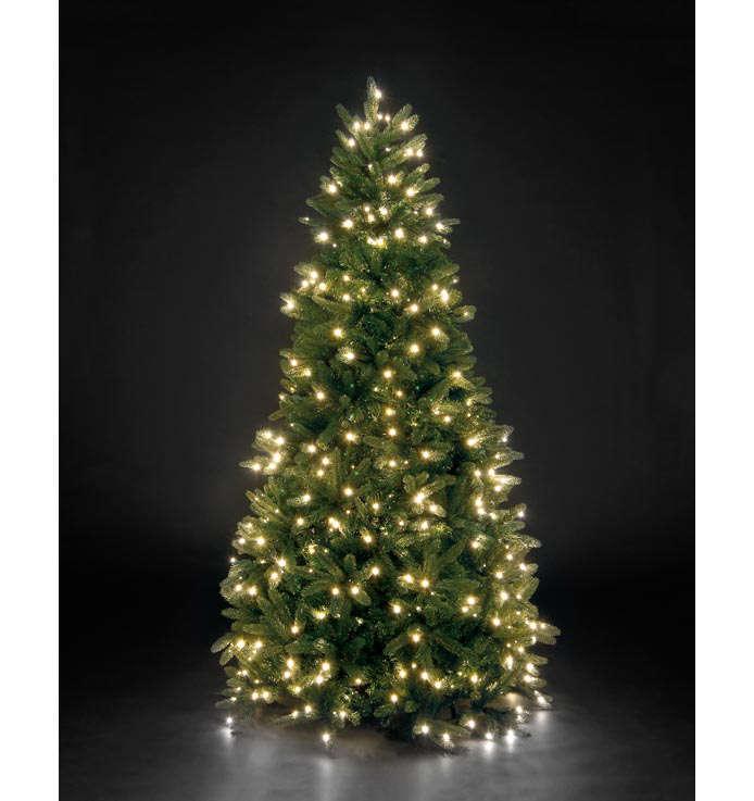Pe Christmas Trees Uk: 240cm Pre-Lit Louise Fir Green W/600 WW LEDs PE Hinged